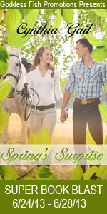 SBB Springs Surprise Book Cover Banner copy